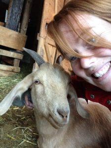 On the goat farm